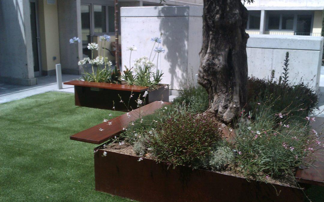 Diseño y ejecución de jardín en El Eixample. Barcelona